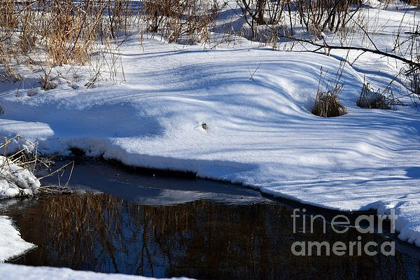 "New artwork for sale! - ""Snow And Grass Reflections"" - https://t.co/mdXznLGfge @fineartamerica https://t.co/2OtTUIkI99"