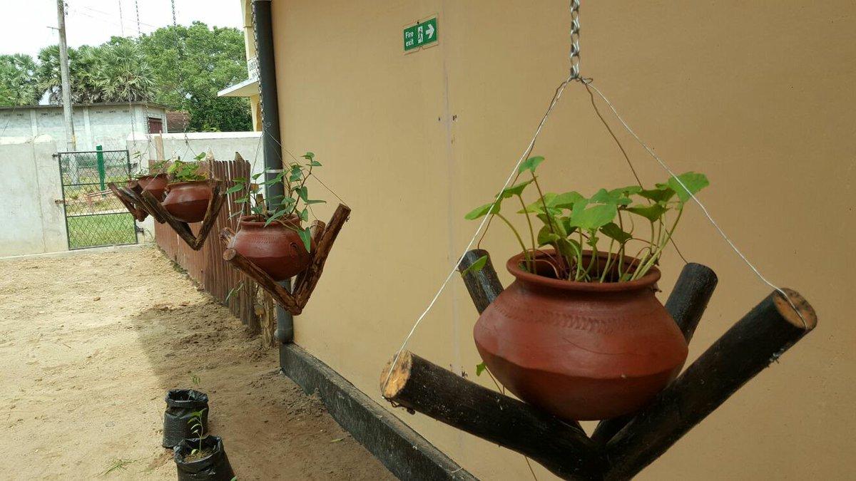 Zoa sri lanka zoasrilanka twitter for House garden design in sri lanka