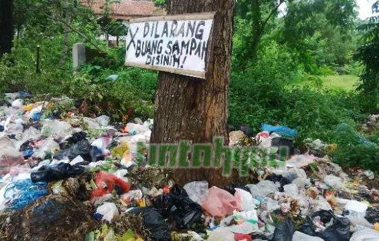 Ya Allah, Plis Dengarkan Jerit Kegelisahan Pohon di Subang ini