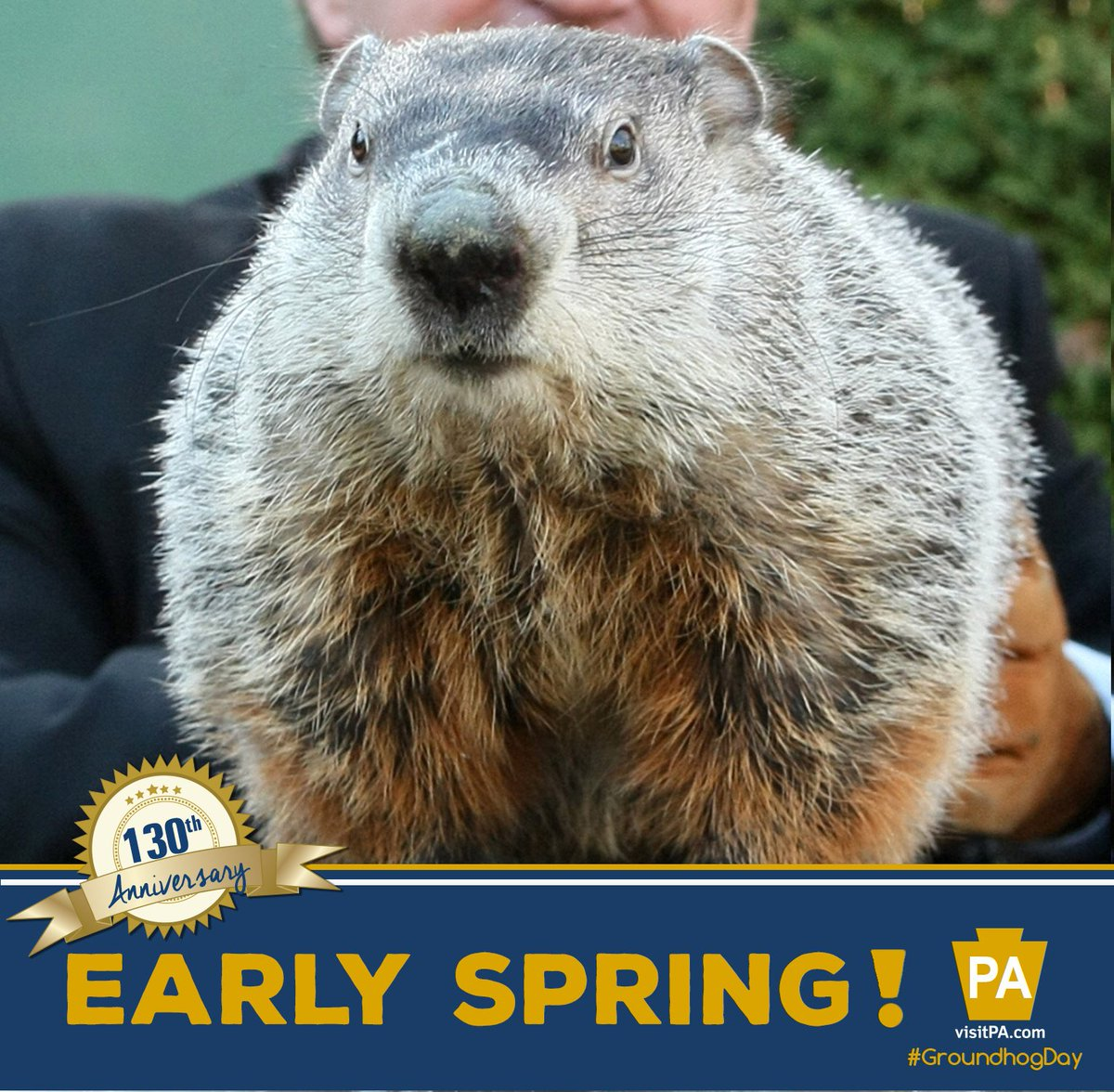 No shadow! Punxsutawney Phil predicts an early spring! #GroundhogDay #GHD130 https://t.co/rTZBLBUZBS