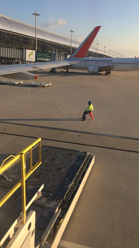綺麗な朝日でも撮ろうかと思ったけど、彼をおさめることにしました。#関西国際空港