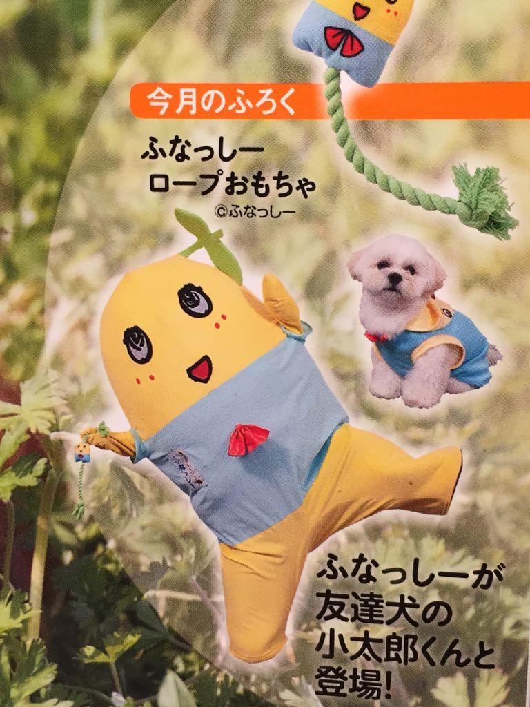 ふなっしーロープおもちゃ欲しい! RT @sacocci: うちの愛犬、小太郎がふなっしーと「いぬのきもち」2月号で初共演してます!小太郎人生初の撮影でした。 #小太郎 #いぬのきもち https://t.co/Pjzxjo980I