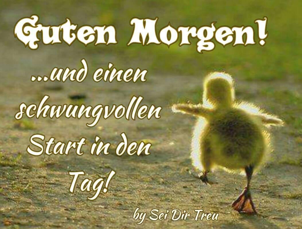 Schnattchen On Twitter At Rhabeac Guten Morgen Meine