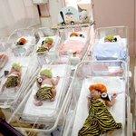 節分の日の産科病棟の様子...大人の遊び道具とされる赤ちゃんたち..