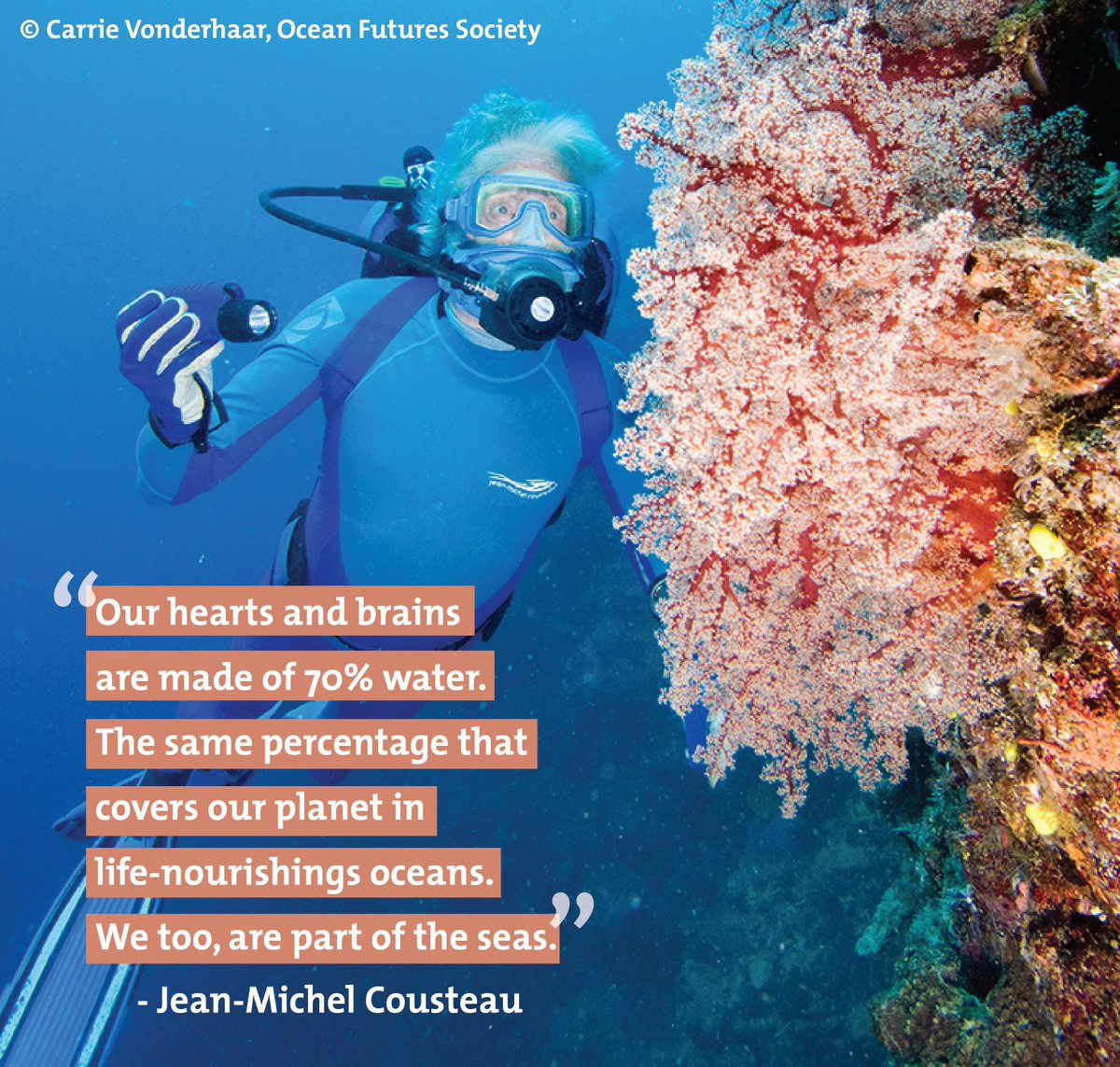 """""""Let us not forget that we are mostly #water. It is time to embrace our water planet as part of us."""" @JMCousteau https://t.co/DxVZEt3PEb"""