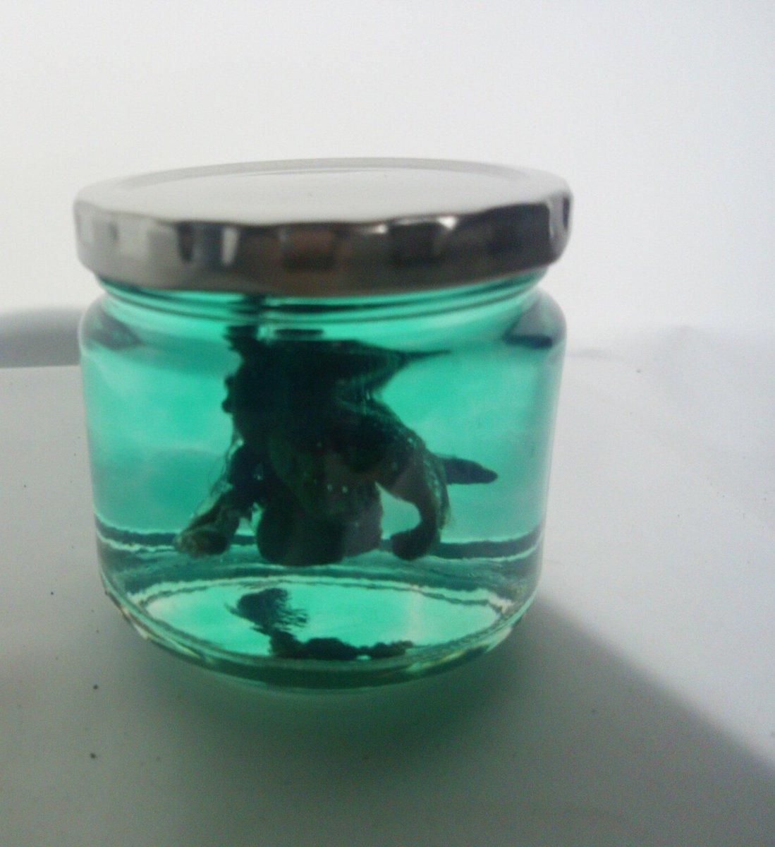 #ニワトリッタイ TLでみた、ダイソーの保水ポリマーパールを使ってカンゼンタイを瓶に封入してみた 下からライトを照らせば、バイオみを感じるできになったかな?