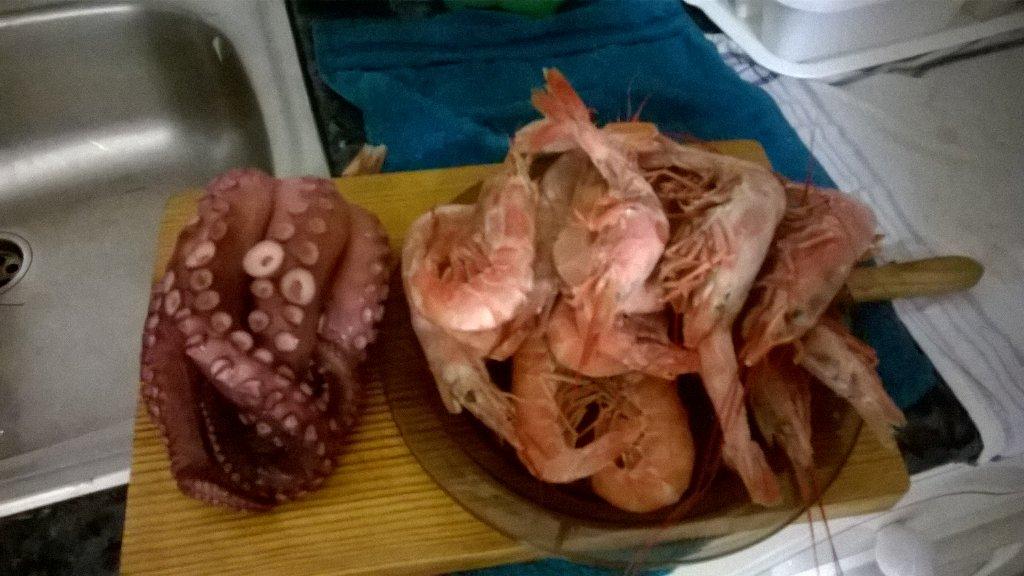 Aasian Octopus suku puoli