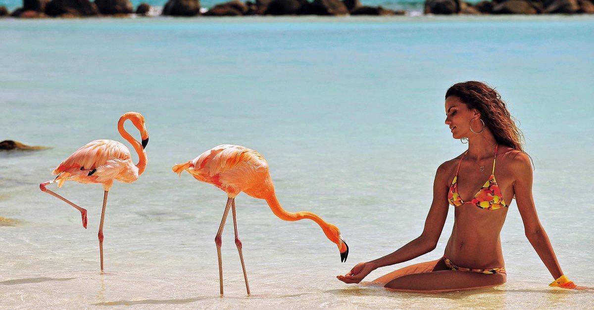 Renaissance Aruba social image