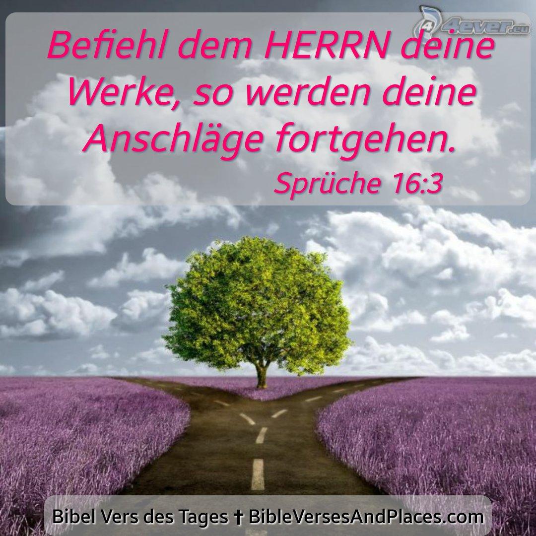 Hartmut Kluge On Twitter Sprüche 16 3 Bibel Vers Des Tages