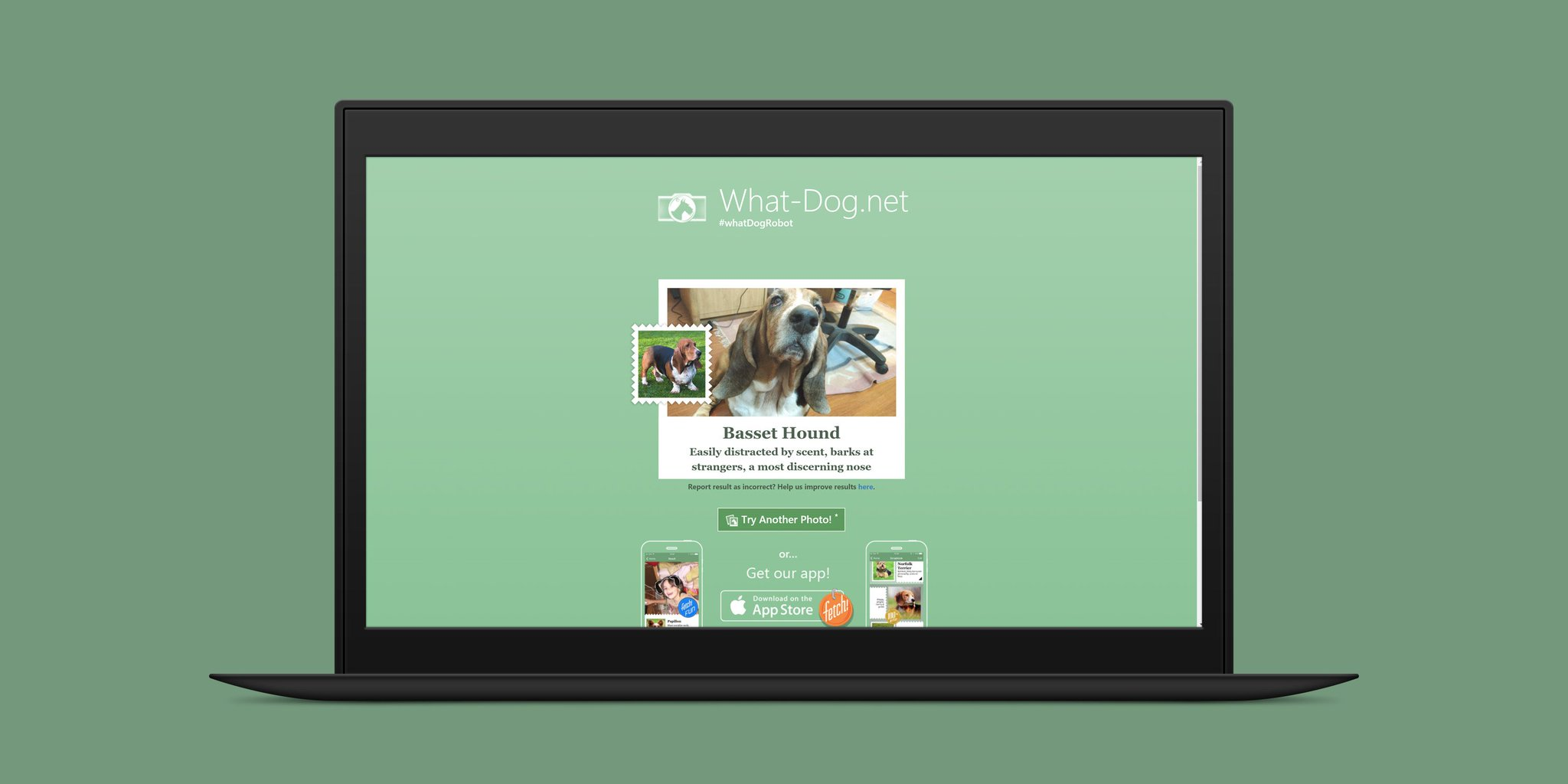 RT @TheNextWeb: Microsoft's new app can identify dog breeds from photos https://t.co/E07vUpu8GS https://t.co/Um8rgZTOgg
