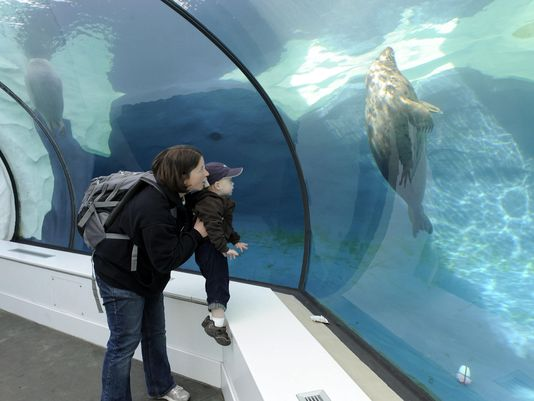 18 @detroitzoo staffers on 10-day trip to Antarctica