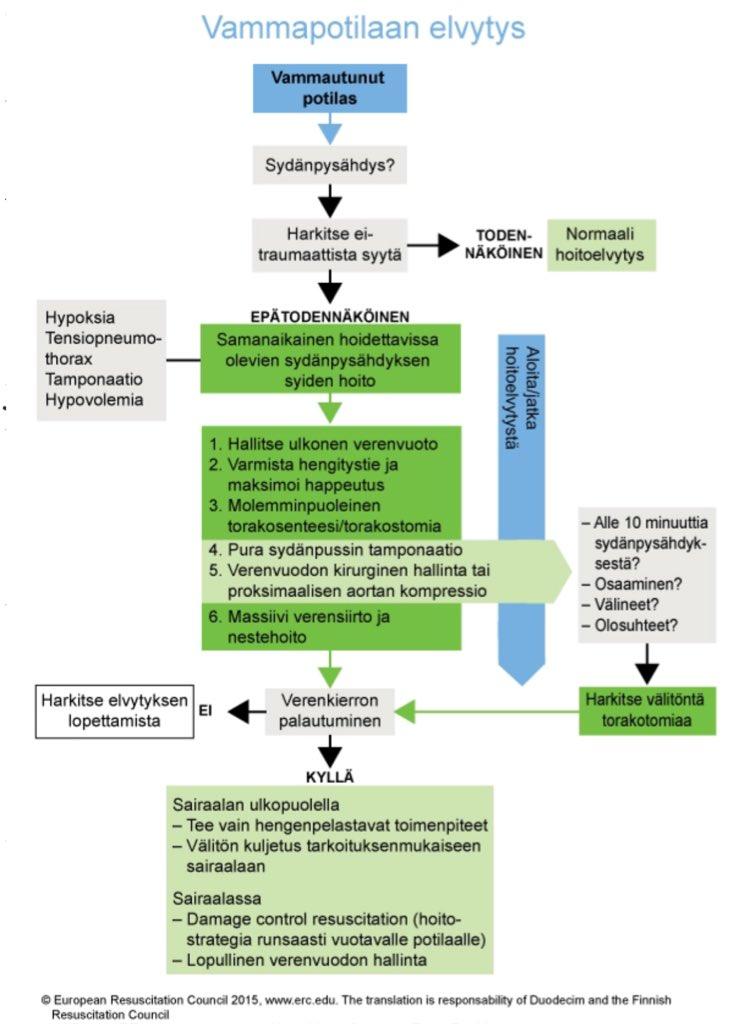 Hoitoelvytys kaavio