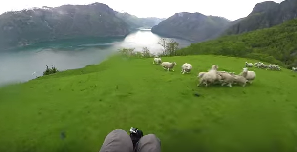 RT @mashable: Holy sheep, this GoPro commercial will make your heart race. https://t.co/wKCoaPBweq https://t.co/bAMcbTQhYy
