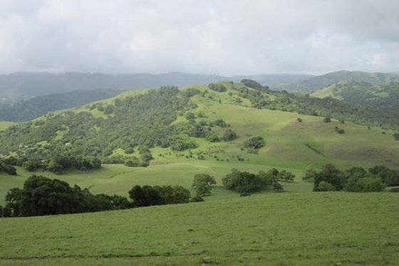 Try this Lush Hike on Burdell Mountain
