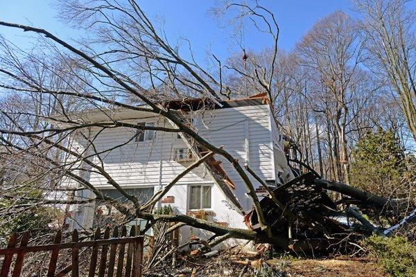 Fallen tree kills woman, traps husband in Delco home.