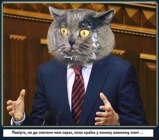 Выборы в Раду пройдут этой осенью или весной 2017 года, - Сюмар - Цензор.НЕТ 834