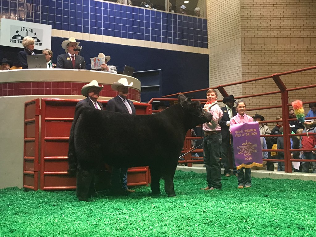"Grand Champion Steer ""Big Boy"" sells for $210k at the Sale of Champions to Hillwood. https://t.co/IoO4LRjnnd"
