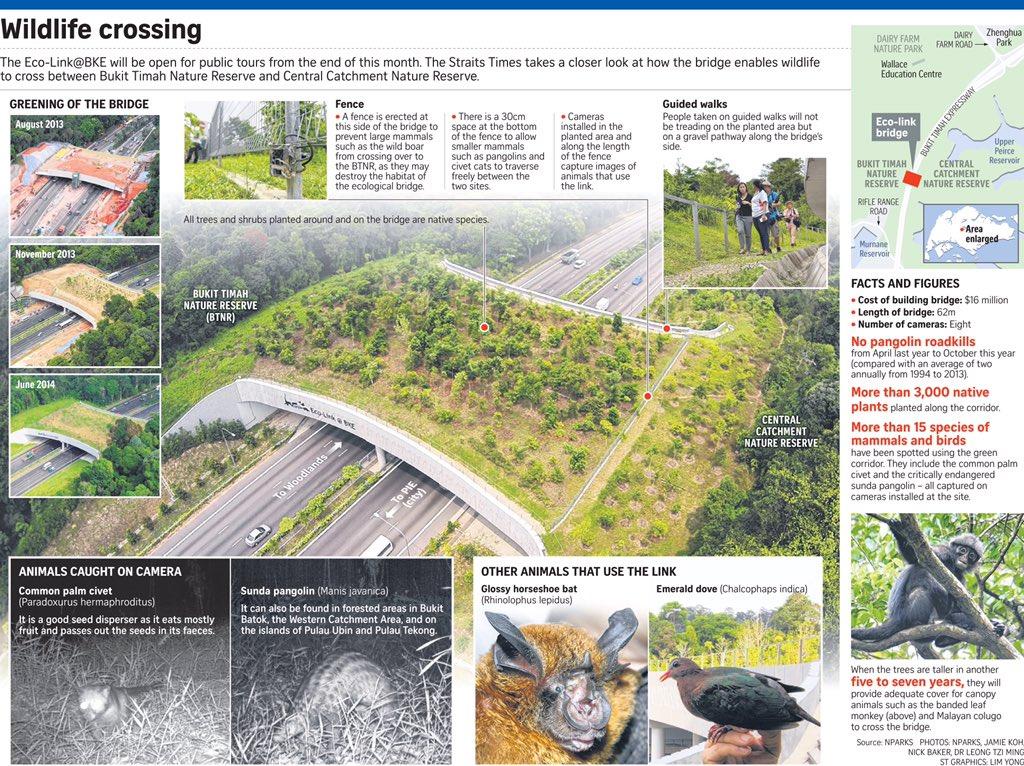 Betul lah Eco link tu dekat Singapore. #TIL https://t.co/oIBRaLaQzo