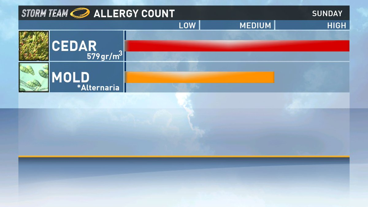 Here's a look at today's Allergy Count: atxwx @kvue