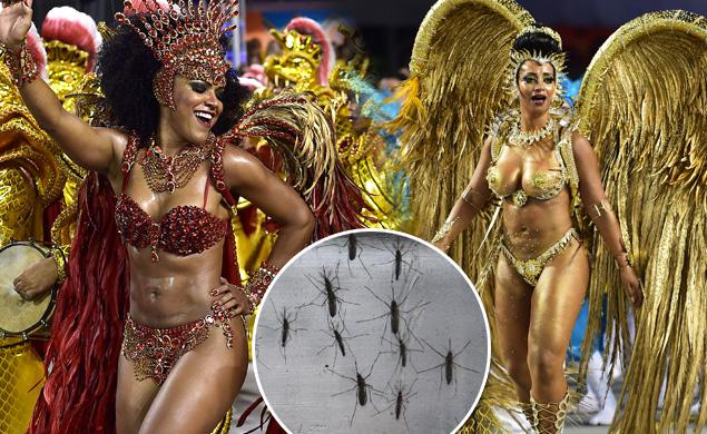 The Zika virus can't stop Brazil's biggest bash at Carnival