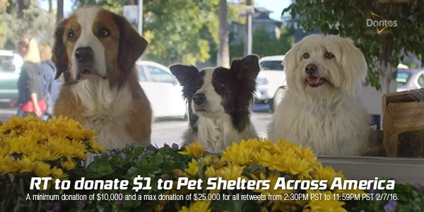 Support #DoritosDogs rescues RT #Doritos to donate $1 to Pet Shelters Across America #promo https://t.co/MggeOlP50L https://t.co/091m3yYZCA