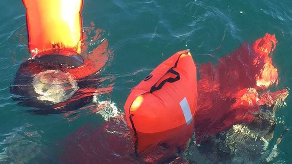 Divers find 2 bodies from midair crash off San Pedro coast; search continues Monday morning