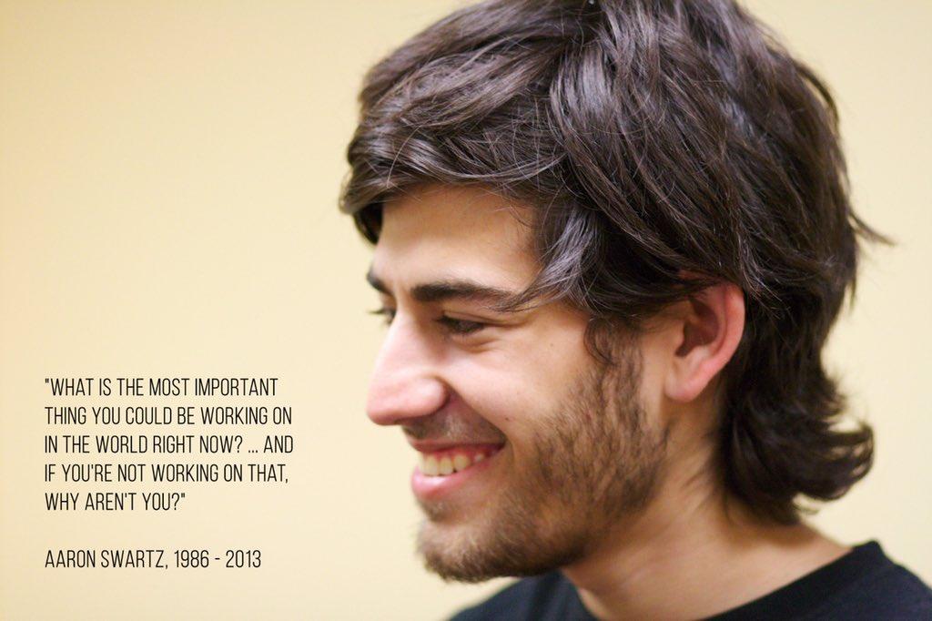 Frase celebre di Aaron Swartz
