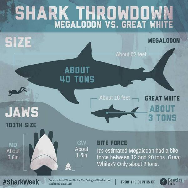 hungry shark games on twitter megalodonmonday shark throw down