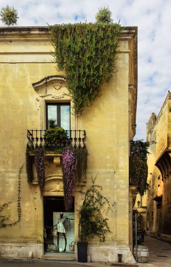 """Roof and Flowered Balcony"" photograph by Odino Cepernich @odinocepernich #TwitterFirstFriday https://t.co/tRtdNOScux"