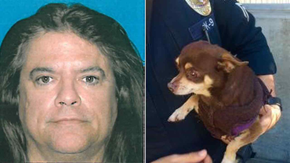 Suspect allegedly kicks, swings dog on leash at lobby of South Pasadena police station