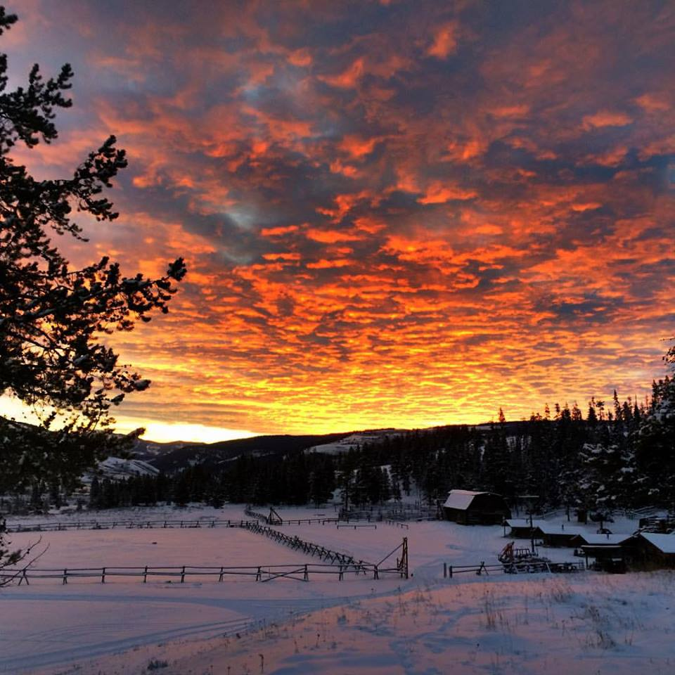 Wow sunset at Nine Quarter Circle Ranch in #Montana, which raises and trains their #horses https://t.co/uB32p6wJ9h https://t.co/SR3b71OlEF