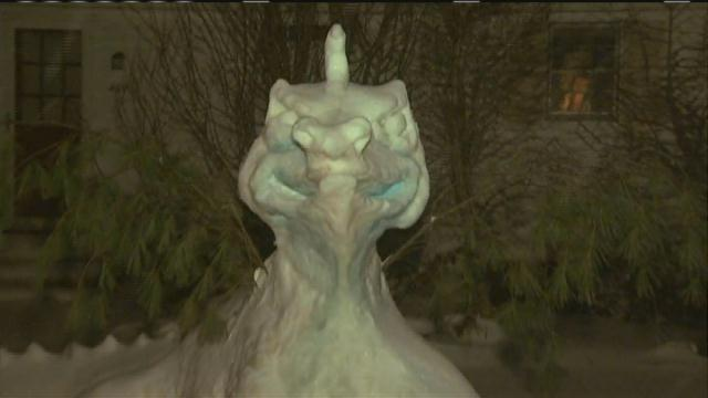 Raynham family builds dragon from snow. 7News
