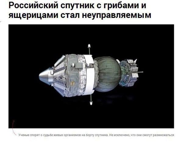 Вертолет Ми-8 разбился в Псковской области, четверо военнослужащих погибло, - Минобороны РФ - Цензор.НЕТ 3959