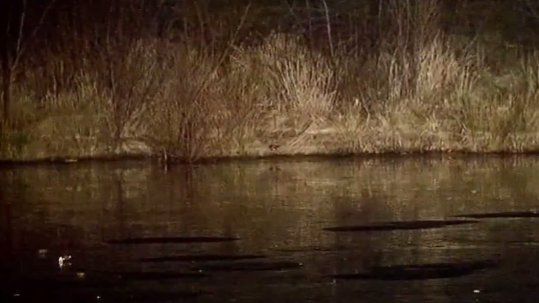 Boy who fell into icy water in Brockton has died (