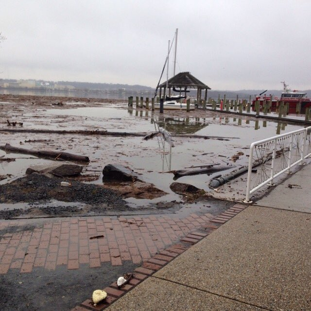 Coastal flooding in Alexandria, Virginia (Photo via @IanFingerman on Twitter)