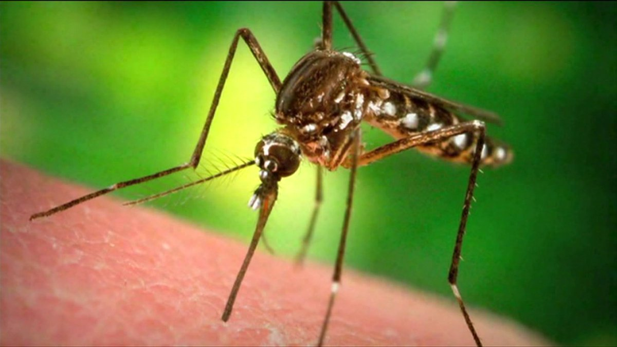 First case of Zika virus in Indiana confirmed