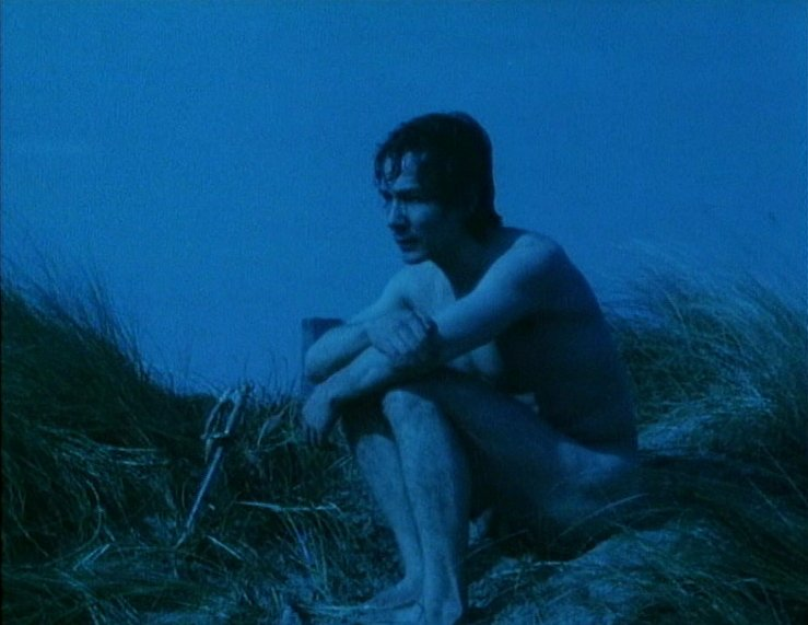 Image result for derek jarman blue