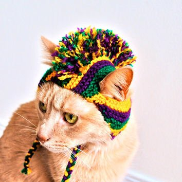 https://pbs.twimg.com/media/CayP7M8XIAAgtx8.jpg