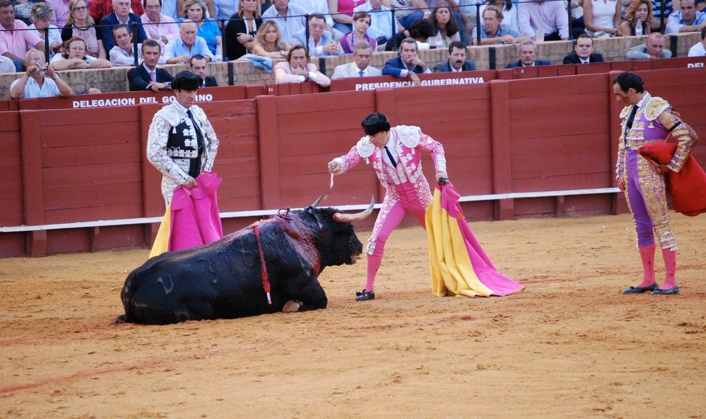 RT @HSIGlobal: @rickygervais you truly helped! Spain's Balearics just got closer to a #bullfighting ban https://t.co/0ntEeZPAkB https://t.c…