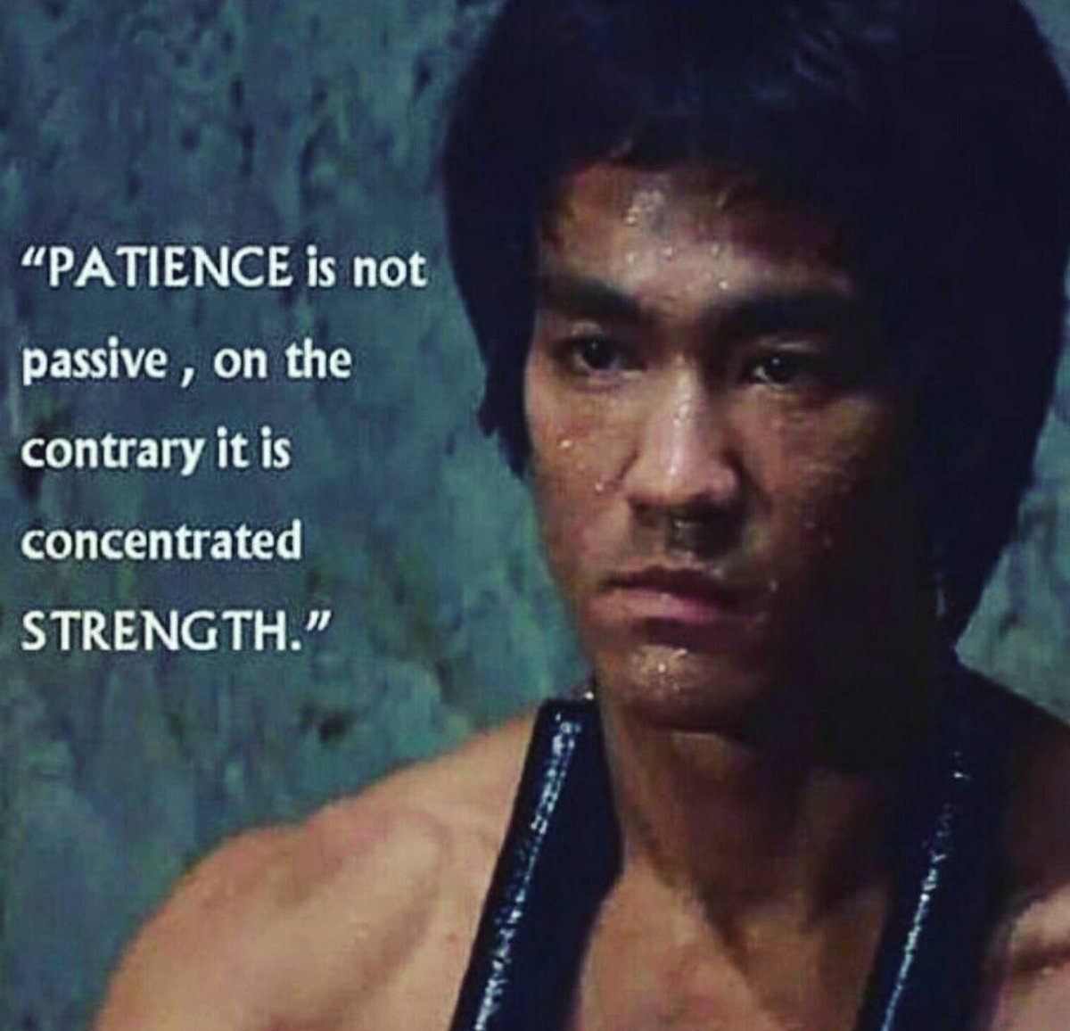 patience is not passive on the contrary it is concentrated patience is not passive on the contrary it is concentrated strength