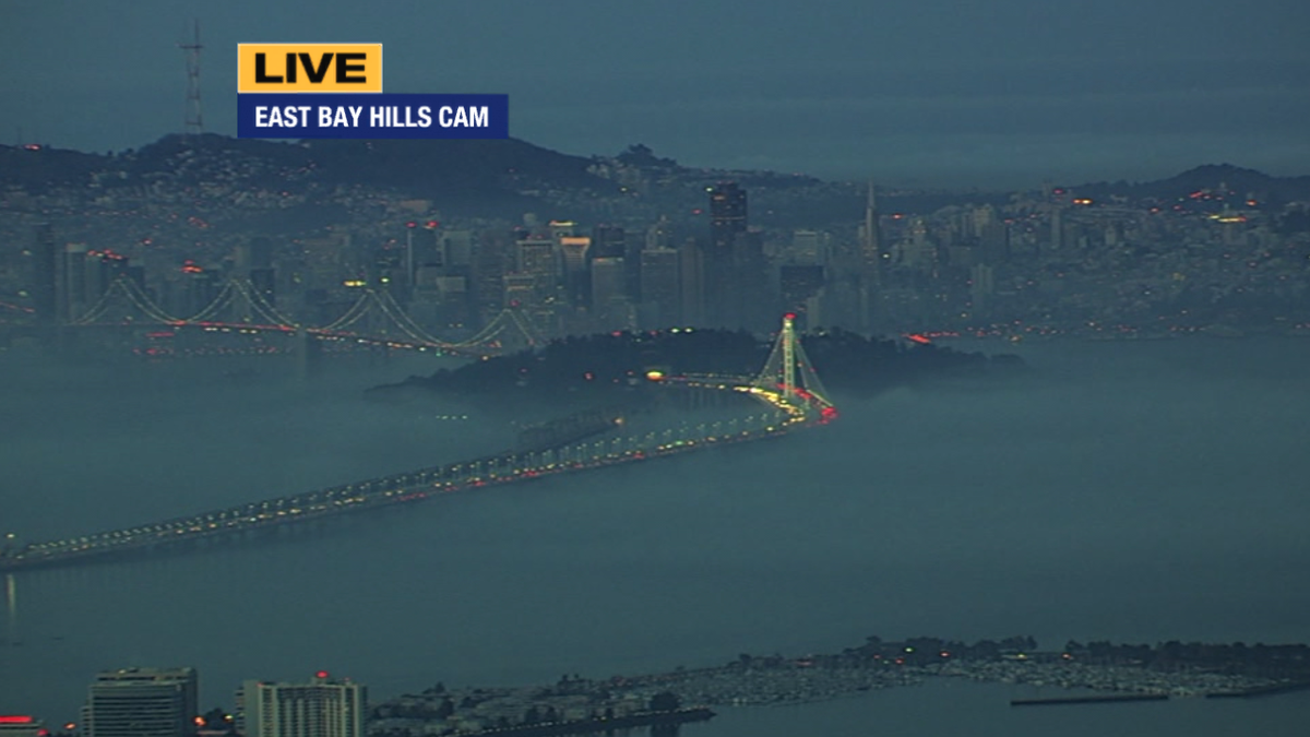 Check out the BayBridge resting on a bed of fog this morning. @SueHallTraffic
