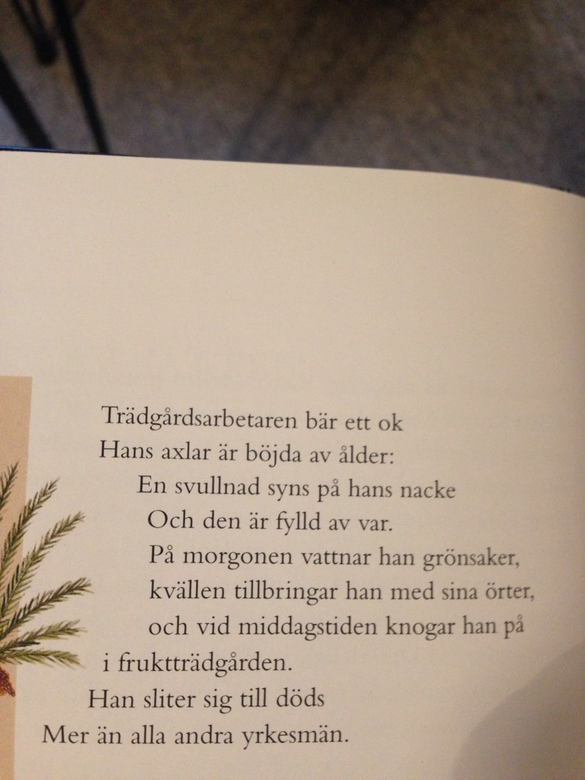 dating i böj eller