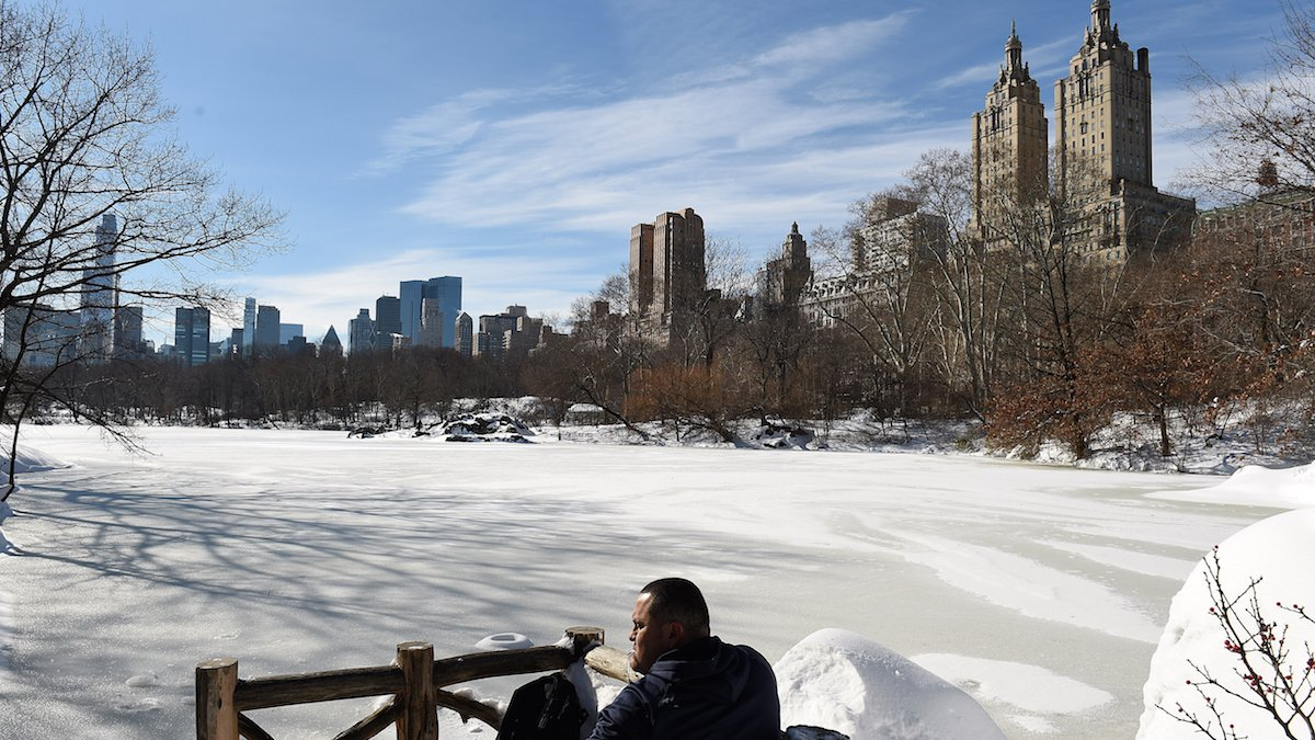 It's too cold for Central Park's annual Ice Festival, officials say