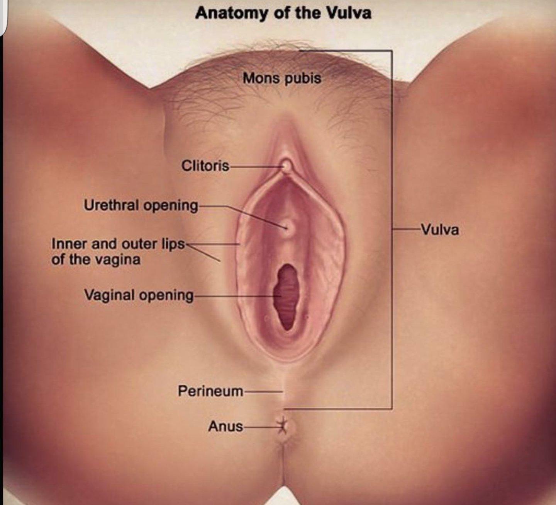 Virgin losing virginity porn