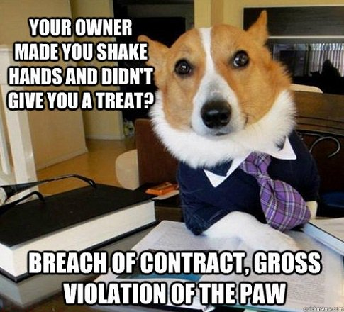 #FridayFunny: A bit of advice from Lawyer Dog when talking to your pet dog... | (source: https://t.co/Wp5tqaCfmc) https://t.co/LKL6I1w1h4