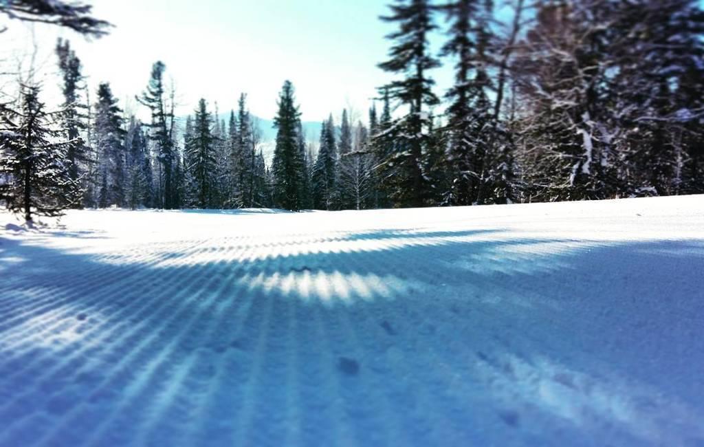 Снег вельвет картинка