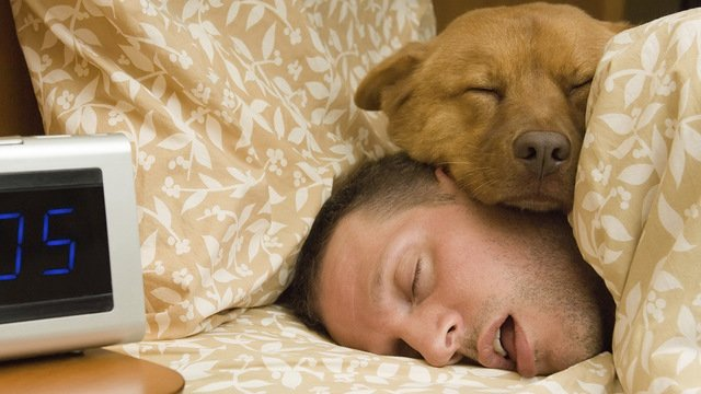 Study: It may be better to sleep with a pet