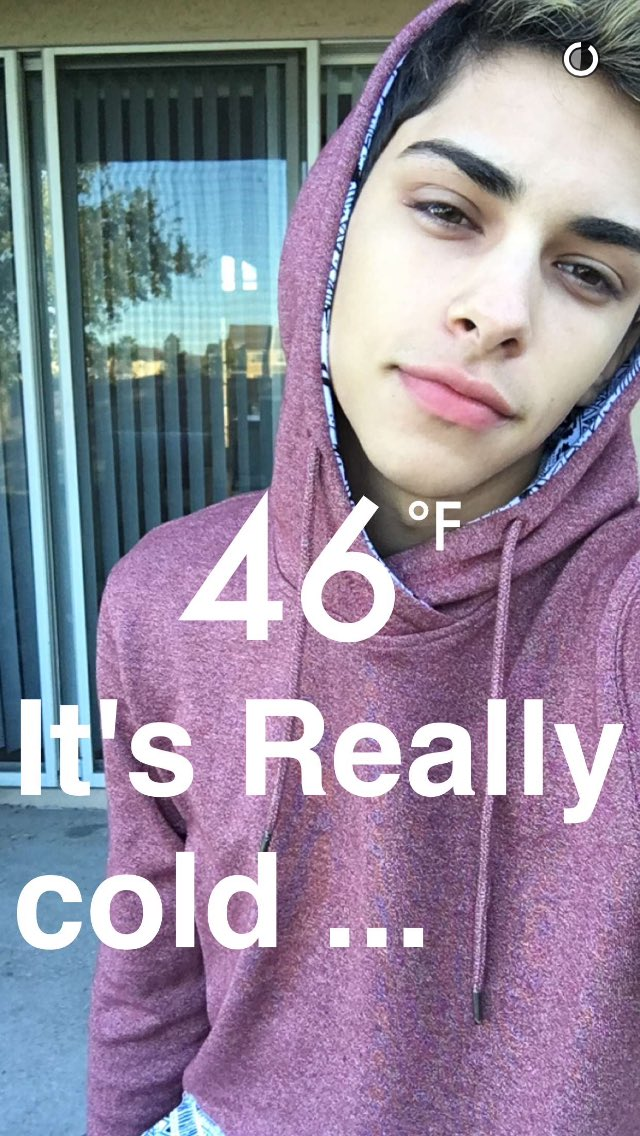 How old is flamingeos