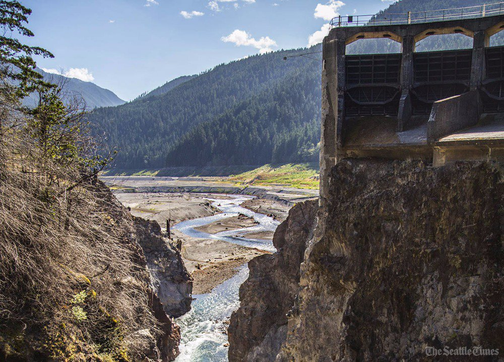 The Elwha River watershed is roaring back to life. Travel through an amazing transformation
