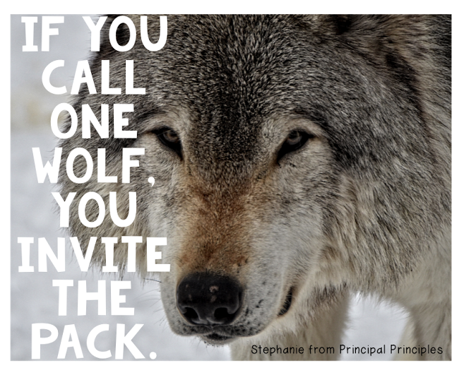 Wolf Quotes About Strength: Stephanie McConnell (@principalsteph1)